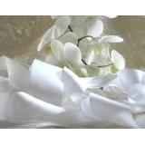 Белая шелковая лента (продажа по катушкам 30,50,100м)